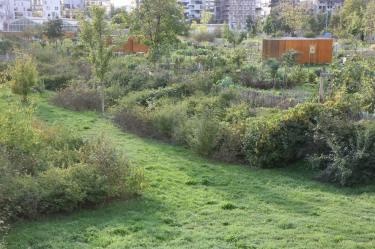 Jardins ouvriers au Grand Parc